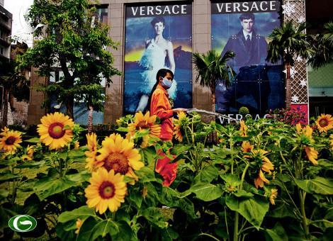 A worker waters sunflowers in front of Vincom Center in downtown Ho Chi Minh City, Vietnam. Consumer prices climbed 16.44 percent in February from a year earlier, the General Statistics Office said in Hanoi today. Justin Mott / Bloomberg