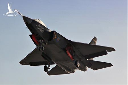 A J-31 fighter prepares to land. (Internet photo)