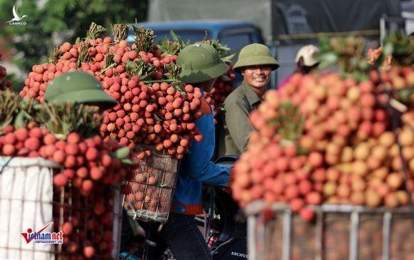 Trung Quốc thay đổi, Donald Trump khó lường, Việt Nam trong vòng xoáy