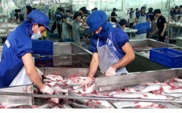 Xuất khẩu nông lâm thủy sản kỳ vọng đạt trên 41 tỷ USD trong năm nay