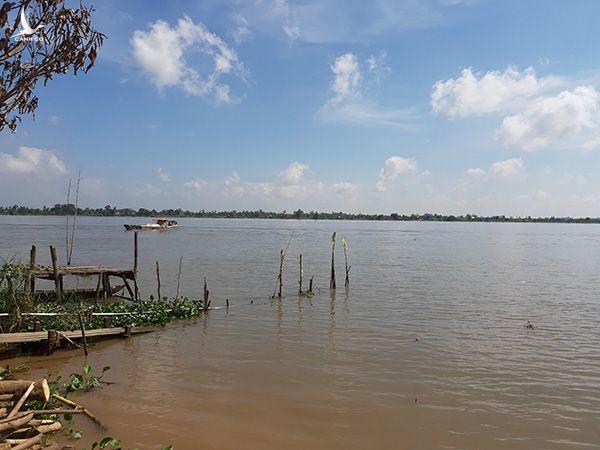 """Huyền thoại về loài """"cá nược thiêng"""" trên sông Mê Kông - Ảnh 1."""