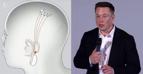 8 ý tưởng không thể điên rồ hơn của tỷ phú khác người Elon Musk - Ảnh 6.