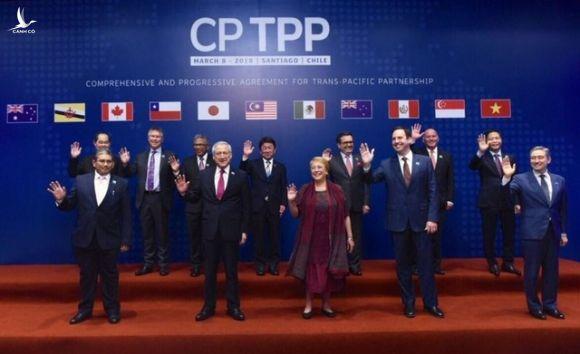 Trung Quốc muốn gia nhập CPTPP, không dễ - 1