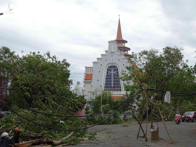 Bàng hoàng cây đổ la liệt cùng trụ điện, nhà bay mất mái sau bão số 5 - ảnh 3