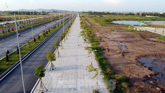 Cận cảnh cây cầu 'Cánh chim biển' của thành phố Hải Phòng - ảnh 9