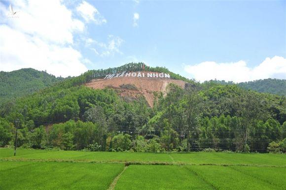 Phá rừng để gắn tên Thị Xã Hoài Nhơn: Sẽ trồng cây, phủ xanh lại rừng - Ảnh 3.