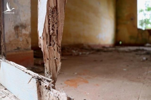 Cánh cửa tại nhiều phòng làm việc bị mối mọt, hư hỏng như thế này