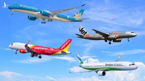 """""""Quý tử"""" Vietnam Airlines """"đòi"""" 50% slot bay nội địa và 100% slot bay quốc tế: Cơ quan quản lý ở đâu? - Ảnh 3."""