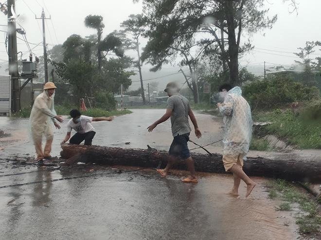 CSGT Đắk Nông cùng người dân dọn dẹp cây bị gãy đổ chắn ngang đường