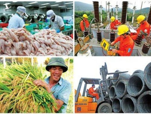 Niềm tin Việt Nam, vượt qua đại dịch, chiếm top đầu thế giới