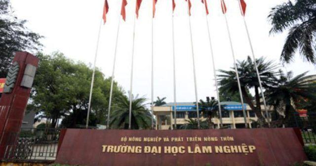 Đại học Lâm nghiệp Việt Nam cấp chứng chỉ chui bất chấp giãn cách xã hội