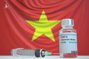 Vaccine, nghịch lý Việt Nam và chạy đua với các cường quốc