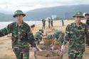 Bộ Quốc phòng, Bộ Tổng tham mưu ứng phó khẩn cấp bão số 9