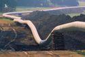 ANM 10/5: Đường ống dẫn dầu lớn nhất của Mỹ tê liệt hoàn toàn vì tin tặc