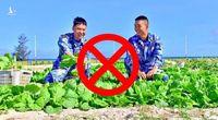 Trồng rau, nuôi lợn… chiêu trò xâm phạm chủ quyền mới của Quân đội Trung Quốc
