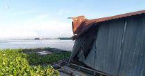 Sà lan tông chìm bè nuôi cá, hơn 9 tấn cá thoát ra sông Tiền