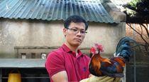 Bỏ việc ở Hà Nội, 9X về quê kiếm 50 triệu đồng/tháng từ gà rừng tai trắng