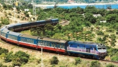 Đường sắt cao tốc Bắc – Nam: Hãy trao cơ hội cho nhà thầu trong nước!