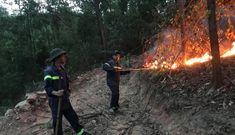 Hơn 200 người dập lửa cứu cháy rừng đầu nguồn ở TP.Đà Nẵng