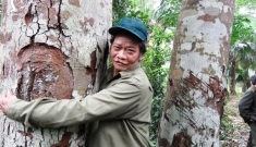 """""""Mãnh hổ"""" cả đời coi rừng lim như báu vật, quyết giữ cho bản làng"""
