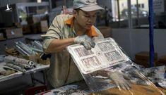 """New York Times: """"iPhone có thể được sản xuất tại Việt Nam. Hãy cảm ơn cuộc chiến thương mại"""""""