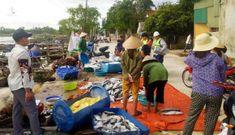 Xuất hiện hàng tấn cá chết nổi trắng sông ở Hà Tĩnh