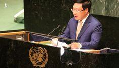 Các cơ chế hợp tác đa phương khẳng định vai trò tất yếu của Việt Nam
