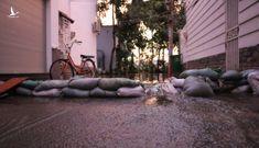 Bức xúc 'đê cát' bỗng dưng xuất hiện ngăn triều cường, cả xóm Sài Gòn ngập sâu