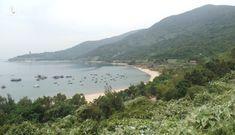 Bộ NN-PTNT sai phạm thế nào trong quản lý rừng tại bán đảo Sơn Trà?