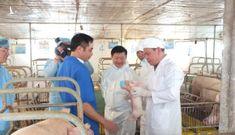 Bộ trưởng NNPTNT: Không được xuất khẩu lợn sang Trung Quốc