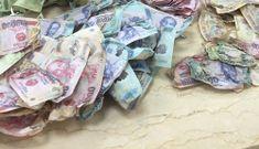 Nhà máy In tiền quốc gia đấu giá 300 tấn tiền polymer