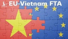 Ủy ban Thương mại EU vừa thông qua EVFTA và EVIPA với Việt Nam