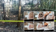 Vụ phát hiện 9 bộ hài cốt ở Tây Ninh: Không thể khởi tố vụ án