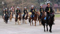 Hơn 100 con ngựa Mông Cổ được cảnh sát cơ động thuần dưỡng