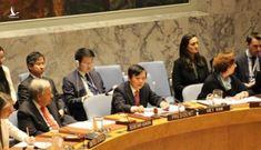 Việt Nam đảm nhận thành công cương vị Chủ tịch HĐBA LHQ