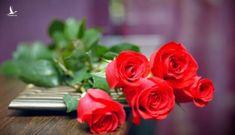 Những lời chúc ý nghĩa dành tặng người phụ nữ bạn yêu thương ngày 8/3