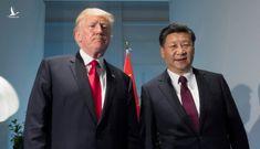 Bất ngờ cuộc điện đàm giữa Tổng thống Trump và Chủ tịch Tập Cận Bình bàn về COVID-19