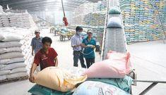 Chỉ trong 2 tháng, Trung Quốc mua tới hơn 66.000 tấn gạo Việt Nam