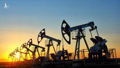 Vì sao giá dầu rẻ chưa từng có?