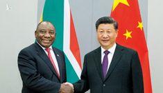 Chủ tịch Trung Quốc điện đàm với Tổng thống Nam Phi về Covid-19
