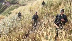 Lực lượng bộ đội biên phòng Việt Nam sẽ được trang bị máy bay?