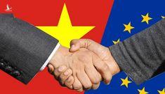 Tán thành sự cần thiết sớm phê chuẩn Hiệp định EVFTA và EVIPA
