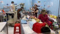 TP.HCM xuất hiện một số ổ dịch sốt xuất huyết