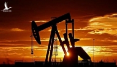 """Vì sao các mỏ dầu trên thế giới không đóng cửa dù thế giới """"dùng không hết"""" ?"""