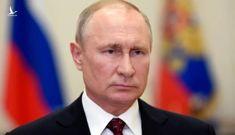 Số ca nhiễm Covid-19 trong ngày cao kỷ lục, vì sao ông Putin vẫn cho gỡ phong tỏa?