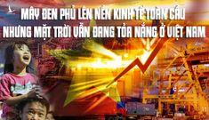 """Mặt trời vẫn đang tỏa nắng thì """"cột điện"""" ắt sẽ về Việt Nam"""