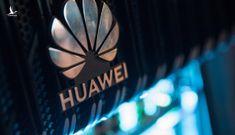 Anh ra 'tối hậu thư', chuẩn bị loại hoàn toàn Huawei khỏi mạng 5G