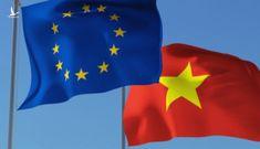 EVFTA và cải cách thể chế