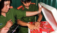 Dâu tây Trung Quốc dư lượng thuốc gấp 3 lần, 22 ngày vẫn tươi như mới hái