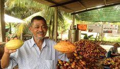 Ông lão Việt Kiều bán công ty về Việt Nam nuôi giấc mơ socola 'Made in Vietnam'